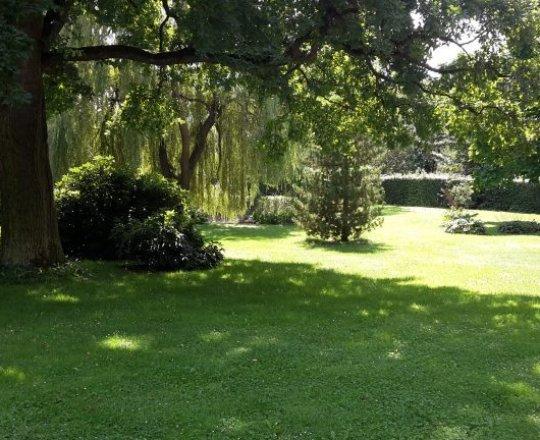 letní semináře v parku