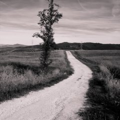 Vlastní cestou...